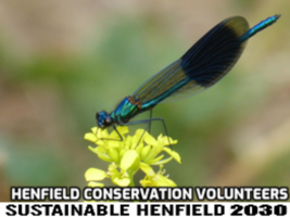 Henfield Conservation Volunteers and Sustainable Henfield 2030